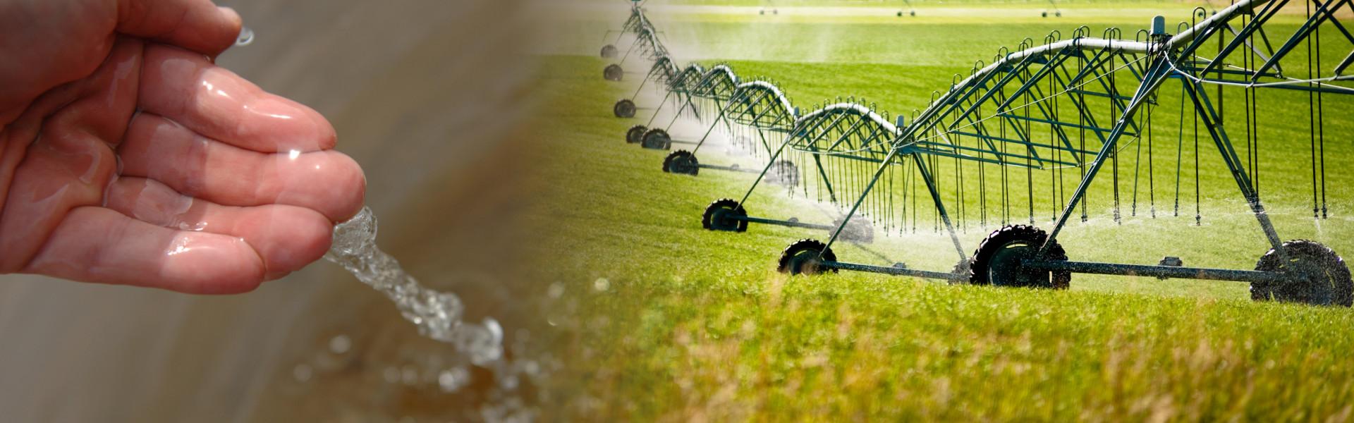 consulente in campo agronomico/ambientale