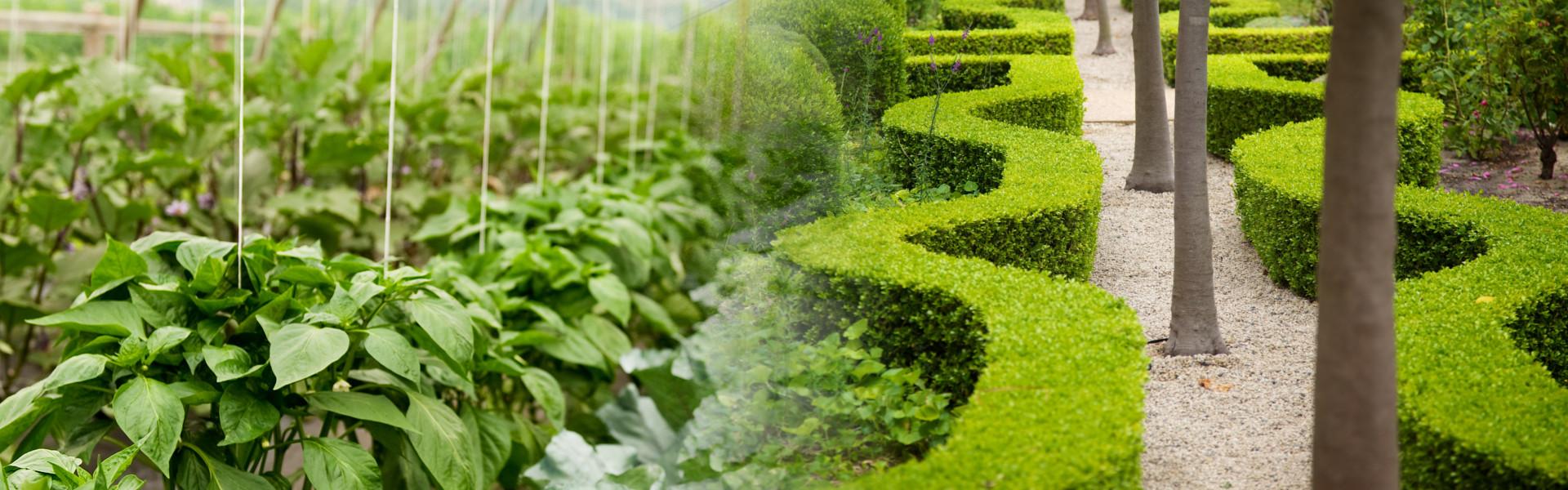 studio progettazione parchi e verde urbano