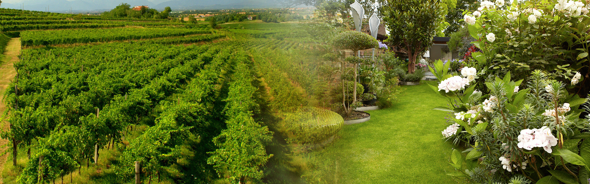 Areaverde  Progettazione giardini e Agronomia